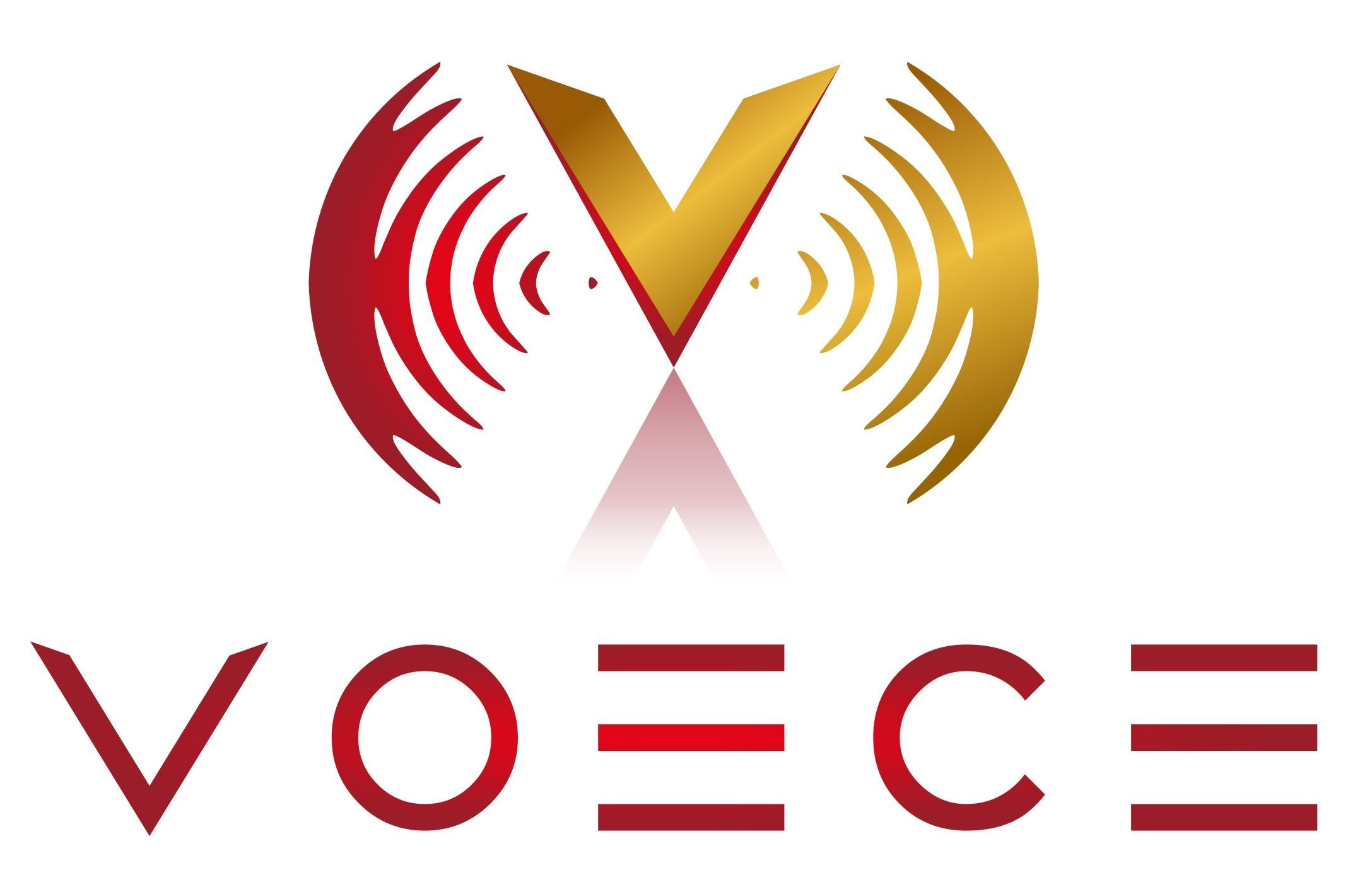 voece-large-logo